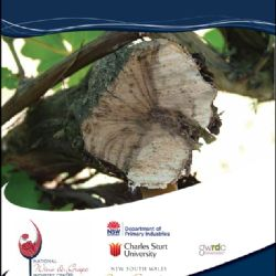 Grapevine trunk diseases - symptoms and distribution (GTD)