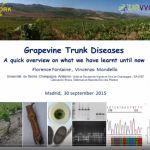 Predavanje: Pregled aktualnih spoznaja na temu bolesti drva vinove loze