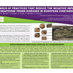 IN SEARCH OF PRACTICES THAT REDUCE THE NEGATIVE IMPACT OF GRAPEVINE TRUNK DISEASES IN EUROPEAN VINEYARDS