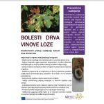 Sveobuhvatni pristup suzbijanju bolesti drva vinove loze