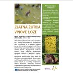 Mjere suzbijanja i sprječavanja širenja zlatne žutice vinove loze