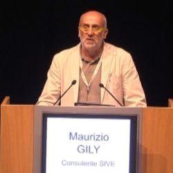 Maurizio Gily, consulente SIVE