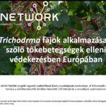 Trichodrma fajok alkalmazása a szolo tokebetegségek elleni védekezésben Európában (PPT)