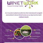 Winetwork projekt - Szórólap